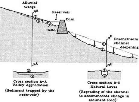 how to make a determinant analysis diagram
