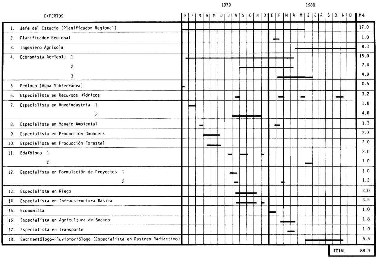 figura 4 cronograma de actividades de los especialistas
