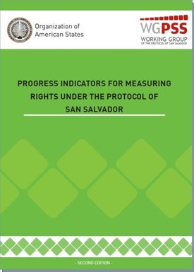 Progress Indicators for Measuring Rights PSS