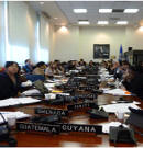 OAS Permanent Council