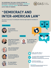"Virtual Forum: ""Democracy and Inter-American Law"""