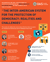 """Virtual Forum: """"The Inter-American system for the protection of democracy: realities and challenges"""""""