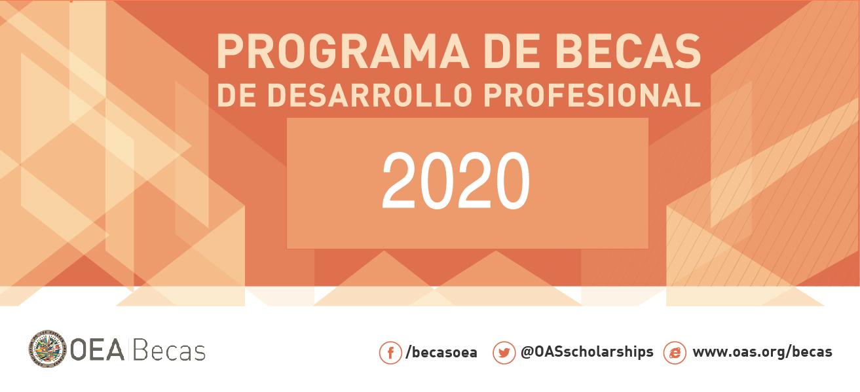 Llamado a Instituciones a ofrecer Becas para cursos de Desarrollo Profesional 2020