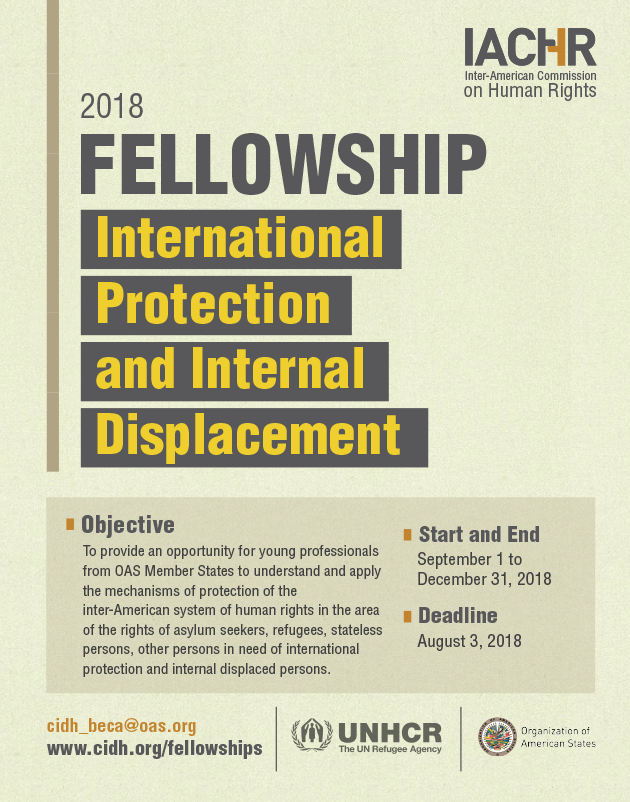 Fellowship on International Protection and Internal Displacement 2018