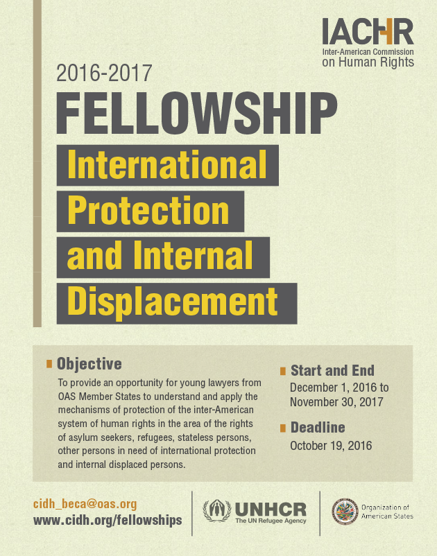 Fellowship on International Protection and Internal Displacement 2016
