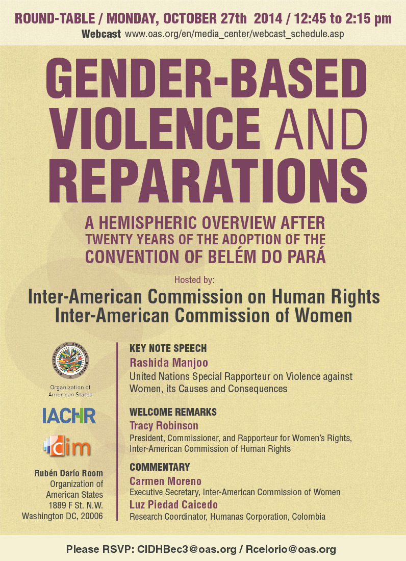 Round Table Tracy Oas Iachr Rapporteurship On The Rights Of Women