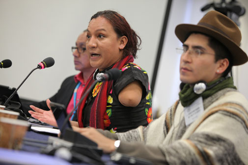 Situation of Human Rights of Lesbian, Gay, Transexual, Bisexual and Intersex Indigenous Persons in the Americas. Ronald Céspedes, Quechua Nation – Bolivia / Amaranta Gómez Regalado, Zapoteca Nation – Mexico.