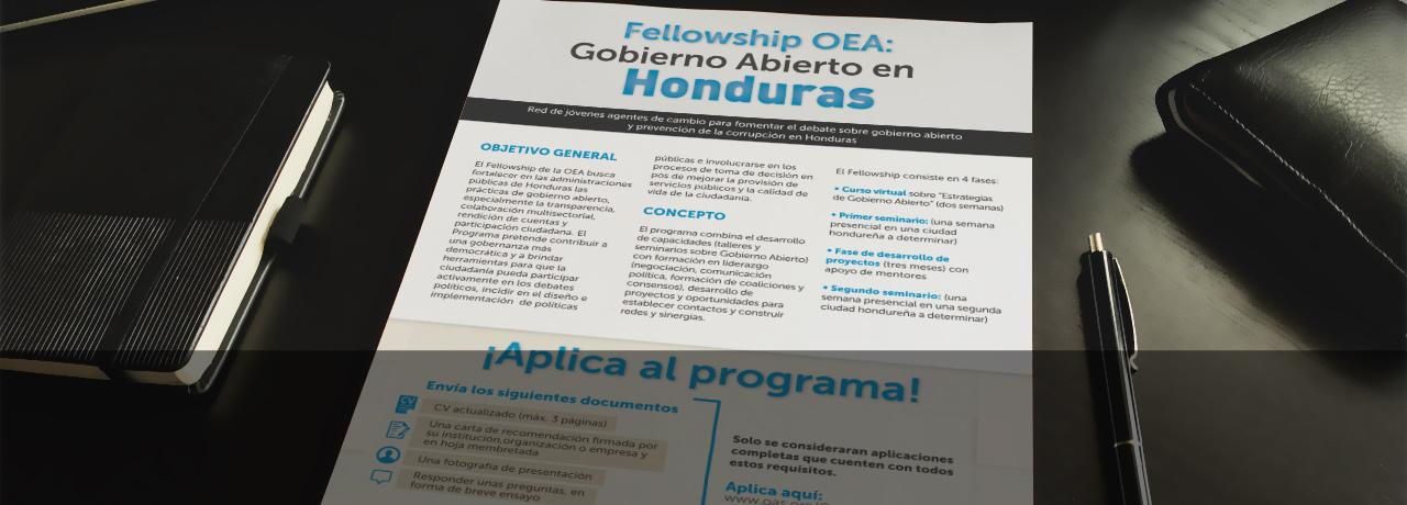 Fellowship OEA: Gobierno Abierto en Honduras