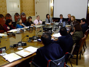 The Committee for the Elimination of all Forms of Discrimination against Persons with Disabilities