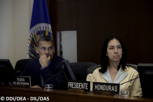 President of the Inter-American Juridical Committee of the OAS presents annual report