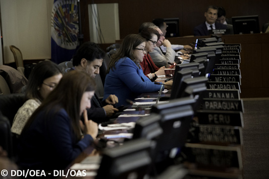 Implementation of the Inter-American Program on Access to Public Information moves ahead
