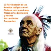 La Participación de los Pueblos Indígenas en el Sistema Interamericano: Mecanismos Existentes y Nuevas Herramientas Propuestas