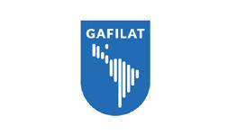 Grupo de Acción Financiera de Latinoamérica (GAFILAT)