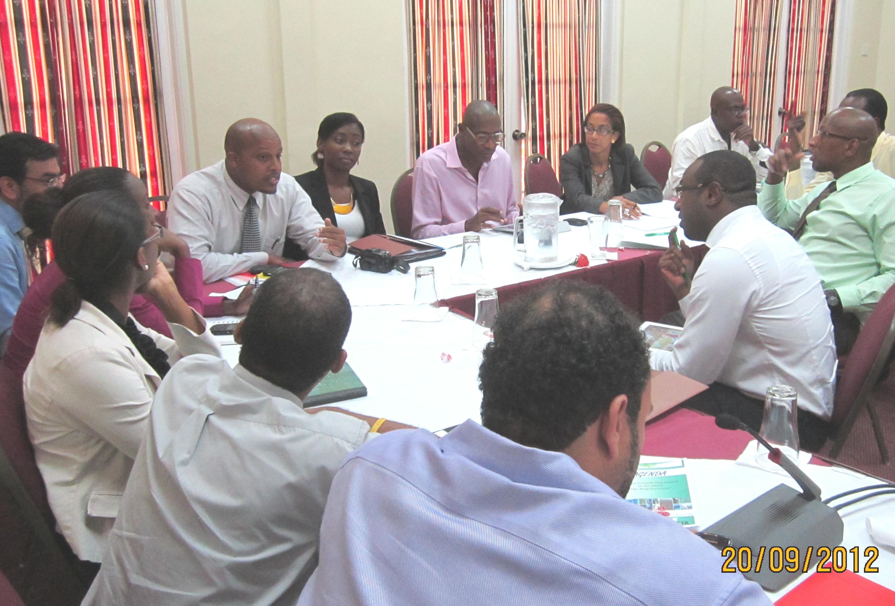 OAS Rep. attends OECS Meeting of Experts on the Implementation of Green Growth Investment Forum