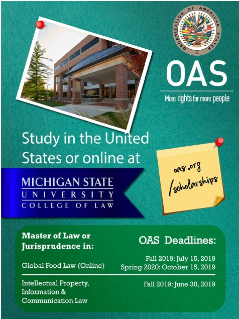 Beca para Maestría en Michigan State University College of Law