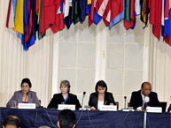 "Regional Conference: ""The Situation of People of African Descent in the Americas: Prospects and Challenges"" (March 2011)"