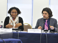 photo1 Meeting of Experts on Violence and Impunity