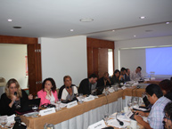 Meeting of Experts on Political Participation