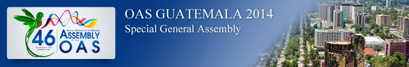 Forty-sixth Special Session of the OAS General Assembly - Guatemala 2014