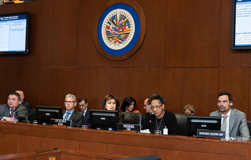 OAS Permanent Council Commemorates 70th Anniversary of Declarations of Human Rights