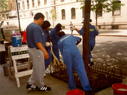 Photo: Offenders engaging in court-mandated community service.  Midtown Community Court. New York City. Source: Center for Court Innovation.