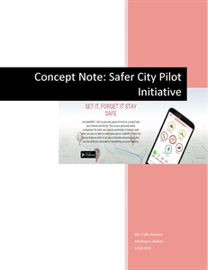Safer City Pilot Project - Belize