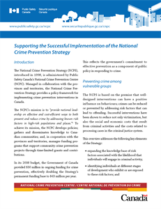 Supporting the Successful Implementation of the National Crime Prevention Strategy