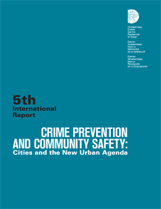 Crime Prevention and Community Safety: Cities and the New Urban Agenda