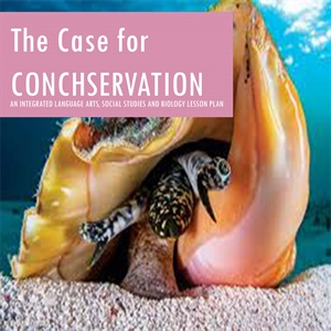The Case for Conchservation