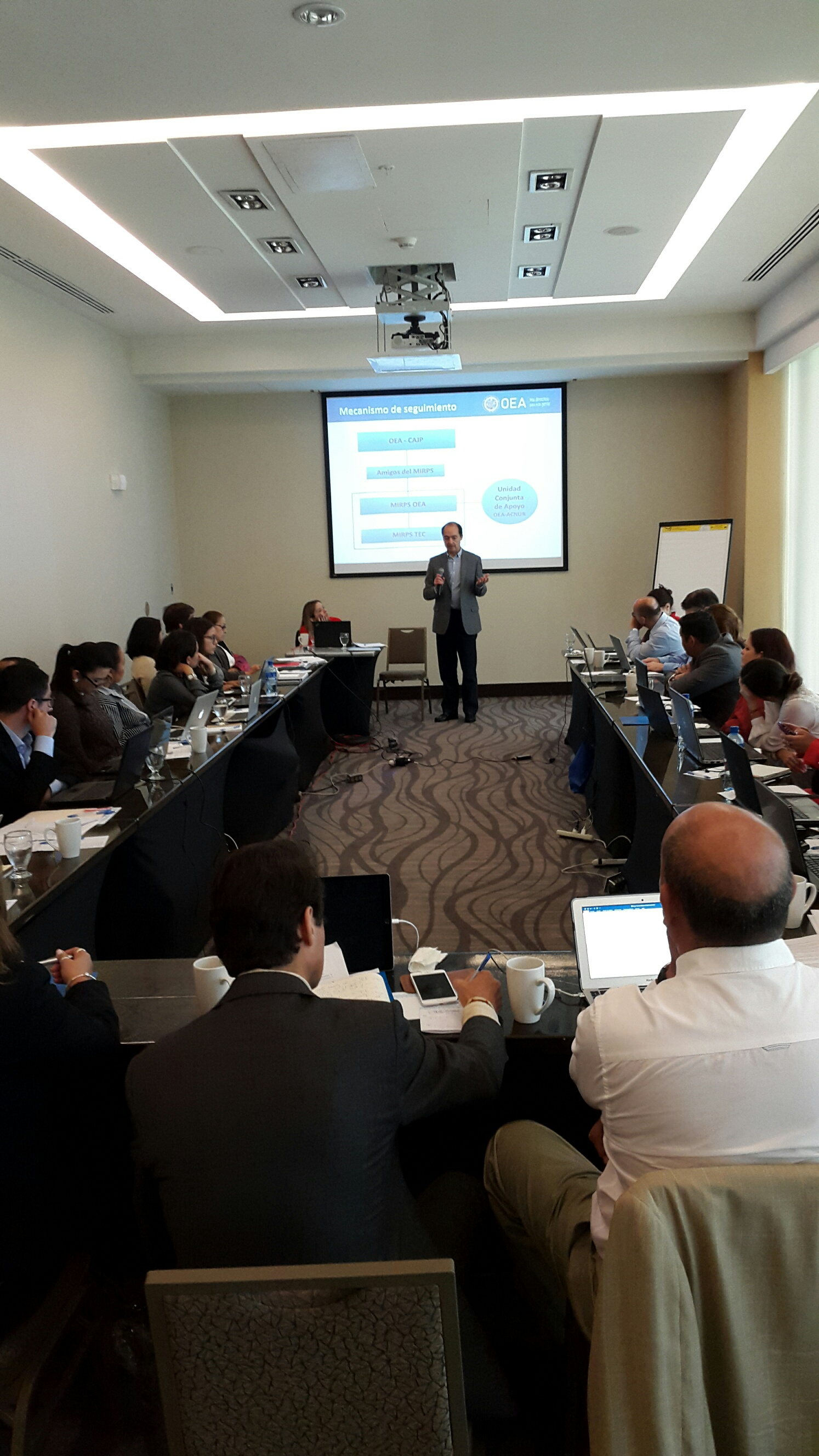 OAS Follow-up Mechanism for the MIRPS Gained Support at Panama Meeting