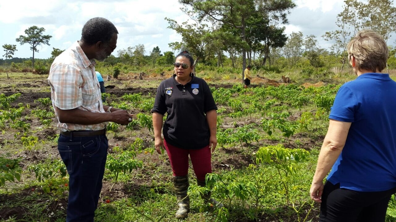 OAS Representative makes On-Site Visit to Projects in Stann Creek and Toledo Communities